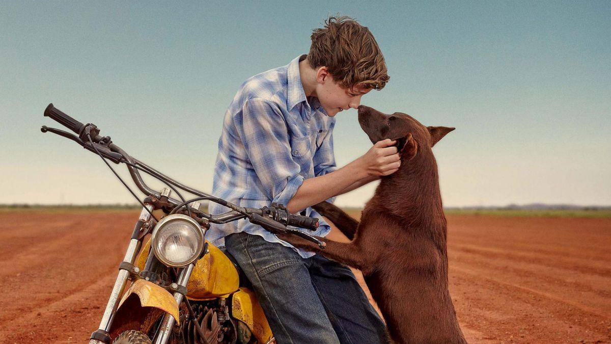RED DOG FILM TECHNIQUES by kate fuller on Prezi