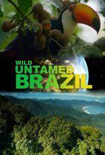 Affiche Wild Untamed Brazil