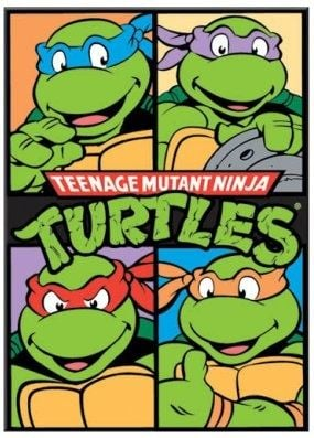 Tortues Ninja Les Chevaliers D Ecaille Dessin Anime 1987