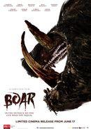 Affiche Boar