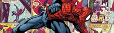 Cover Dans ma collection de Spider-Man (Librairie)