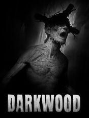 Jaquette Darkwood