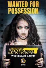 Affiche Wellington Paranormal