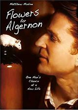 Affiche Flowers for Algernon