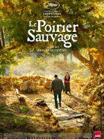 Affiche Le Poirier sauvage