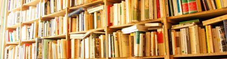 Cover Les meilleurs romans inspirés d'une histoire vraie