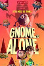 Affiche Gnome seul