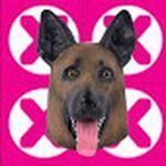 Affiche Dogzy Life