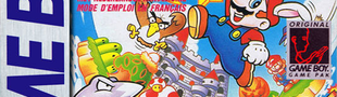 Jaquette Super Mario Land 2: 6 Golden Coins