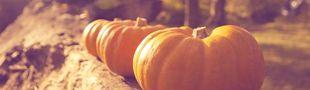 Cover Pumpkin Autumn Challenge 2018