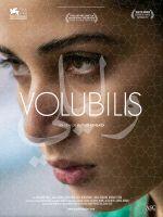 Affiche Volubilis