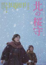 Affiche Sakura Guardian in the North