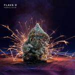 Pochette FabricLive 88: Flava D