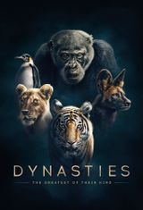 Affiche Dynasties