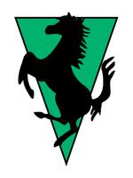 Logo R&S Records