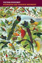 Couverture Pourquoi les oiseaux meurent