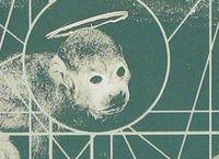 Cover Les_meilleurs_albums_de_1989