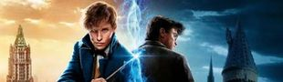 Cover Les meilleurs films de l'univers Harry Potter