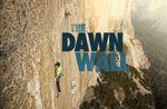Affiche The Dawn Wall