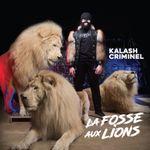 Pochette La fosse aux lions