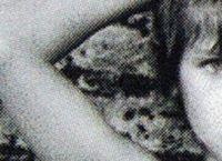 Cover Les_meilleurs_albums_de_1983