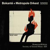 Pochette What Heat - Bokanté + Metropole Orkest