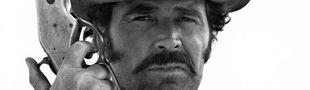 Cover Les westerns de James Garner