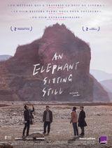 Affiche An Elephant Sitting Still