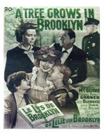 Affiche Le Lys de Brooklyn