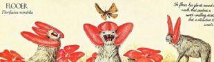 Cover Nature — Biomimétisme — Futur(s) — Design