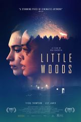 Affiche Little Woods