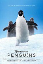Affiche Penguins