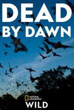 Affiche Dead by Dawn