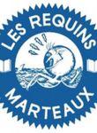 Logo Les Requins Marteaux
