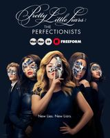 Affiche The Perfectionists