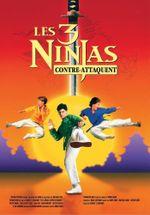 Affiche Les 3 ninjas contre-attaquent