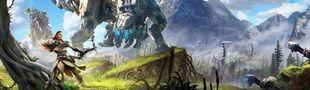 Cover Jeux vidéo - PS4