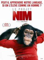 Affiche Le Projet Nim