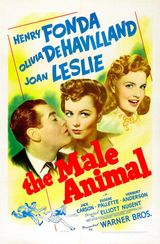 Affiche The Male Animal