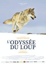 Affiche L'Odyssée du loup