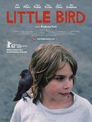 Affiche Little Bird