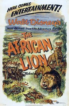 Affiche Lions d'Afrique