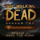 Jaquette The Walking Dead 2x04 : Amid the Ruins