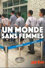 Affiche Un monde sans femmes