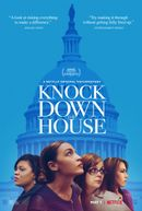 Affiche Knock Down the House