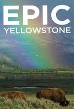Affiche Epic Yellowstone