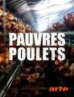 Affiche Pauvres poulets - Une géopolitique de l'oeuf