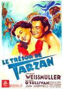 Affiche Le Trésor de Tarzan