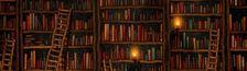 Cover Bibliothèque parfaite