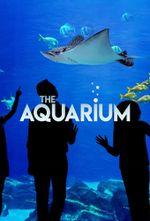 Affiche The Aquarium